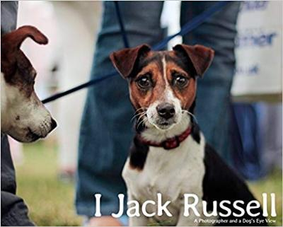 I, Jack Russell: A Photographer and a Dog
